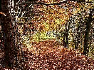 Wellness Herbst Angebote